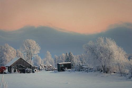 Фотохудожник из Латвии Alloxa (66 фото)