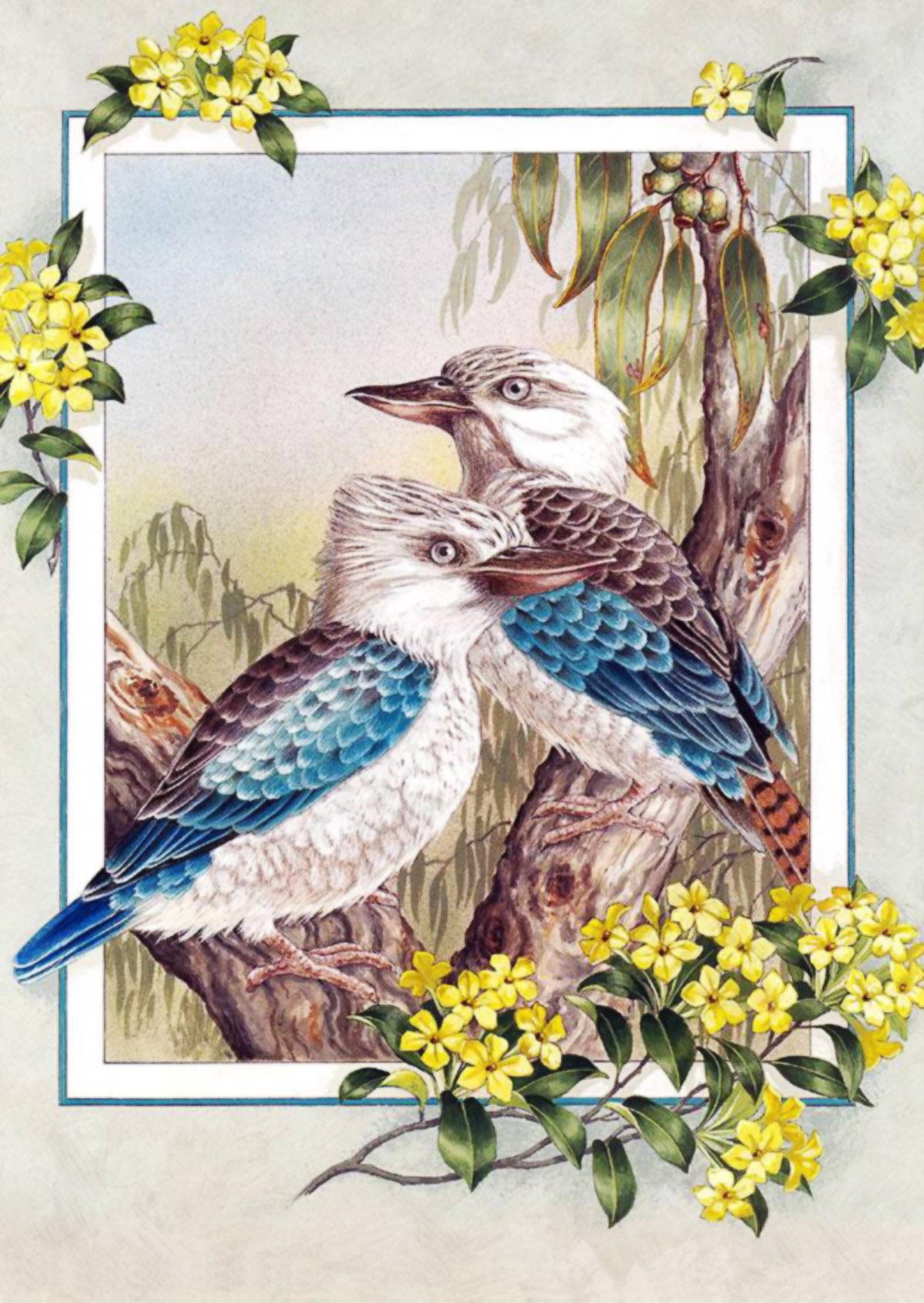 Красивые открытки с птицами 493