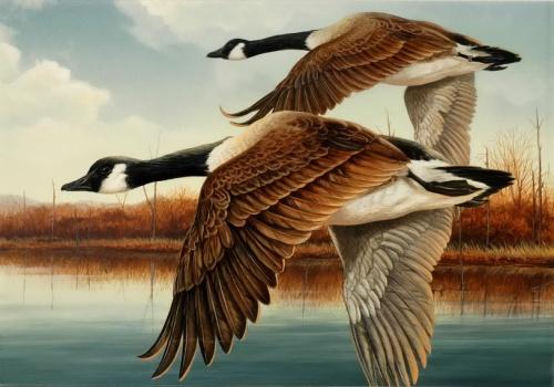 Утки в живописи - Duck Stamps (23 работ)