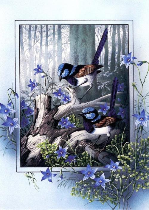 Птицы - рисованные открытки (12 работ)