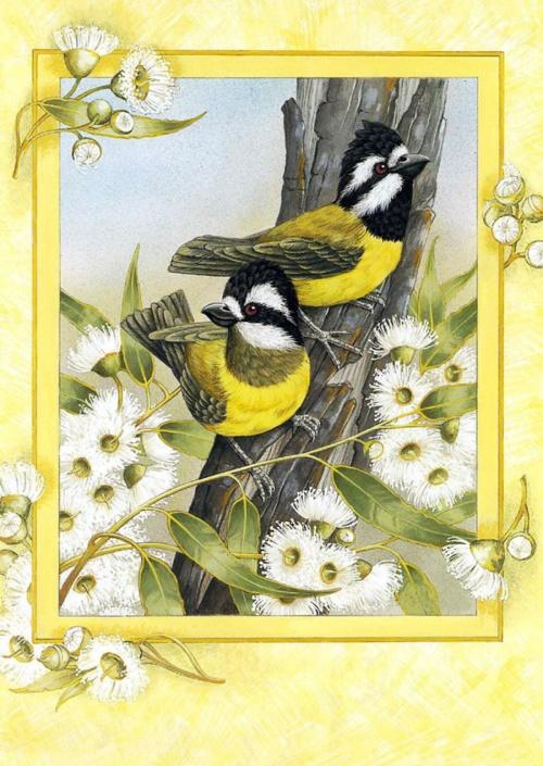 Красивые открытки с птицами 513