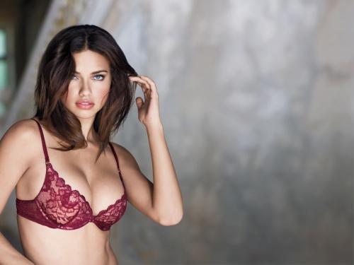 Lingerie Sexy Girl (223 фото) (эротика)