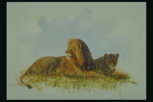 Рисунки животных (93 работ)