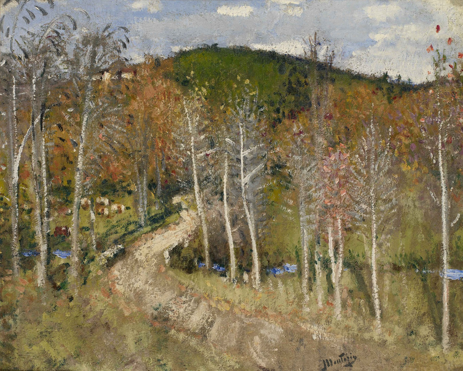 "Картинки по запросу ""temperate broadleaf and mixed forest"""