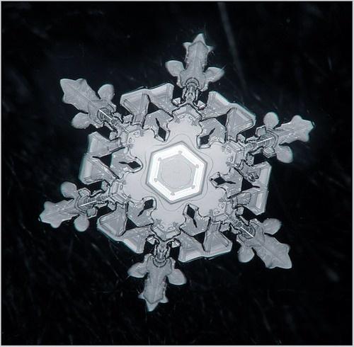 Снежинки - Макро фотография (34 фото)