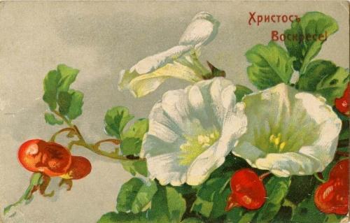 Двести лет вместе Часть вторая  Солженицын Александр