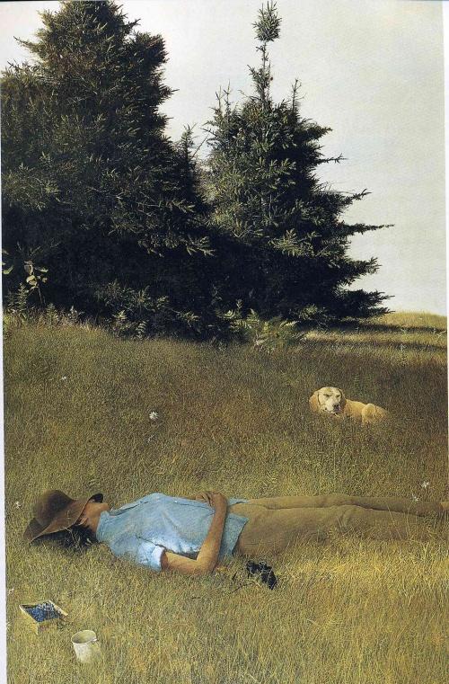 Эндрю Уайет (Andrew Wyeth) (225 работ)