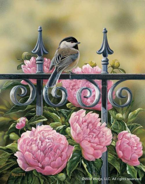Художница Rosemary Millette (47 работ)