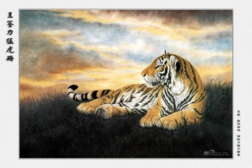 Wang Quan Li - Tiger (15 работ)