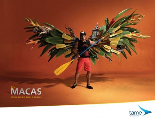 Современная реклама: туризм и транспортные услуги (100 фото)