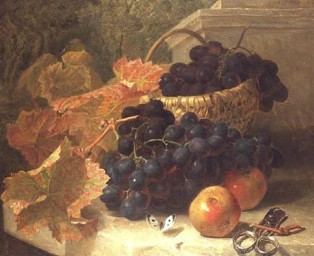 Eloise Harriet Stannard (1829-1915) (58 работ)