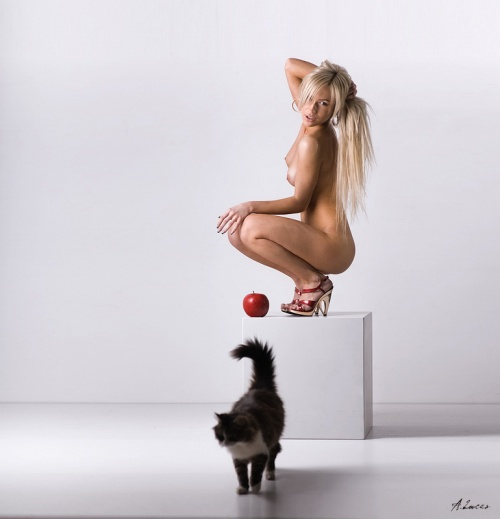"Фотограф Andrew Lucas ""Гламур, НЮ"" (70 фото) (эротика)"