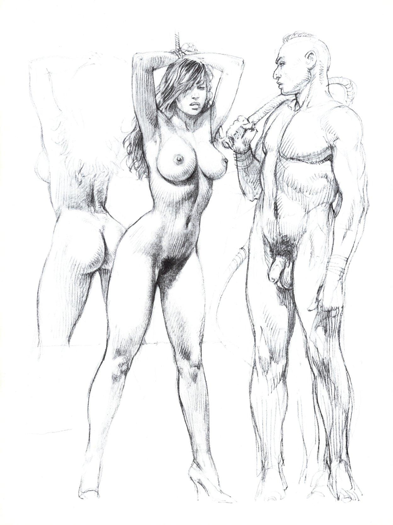Секс нарисованный карандашом 19 фотография