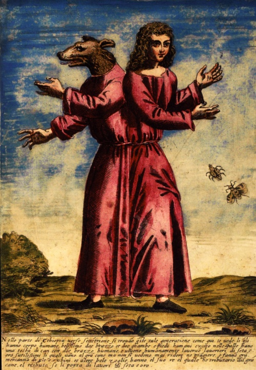 Улисс Альдрованди | XVIe | Ulisse Aldrovandi (273 работ)