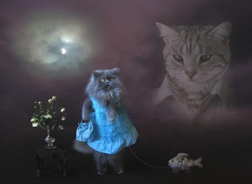 Фотохудожница Ирина Михайлова (57 фото)