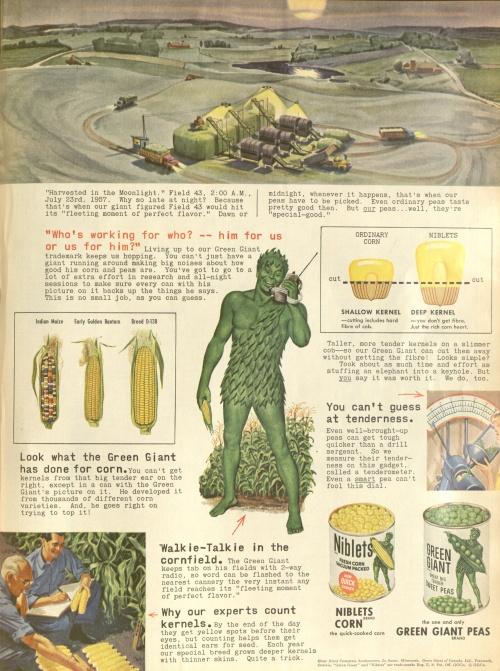 Журнальная реклама: пища-13 (29 фото) (2 часть)