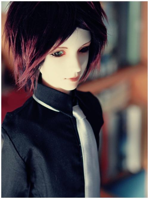 Шарнирная кукла 2010 (71 фото)
