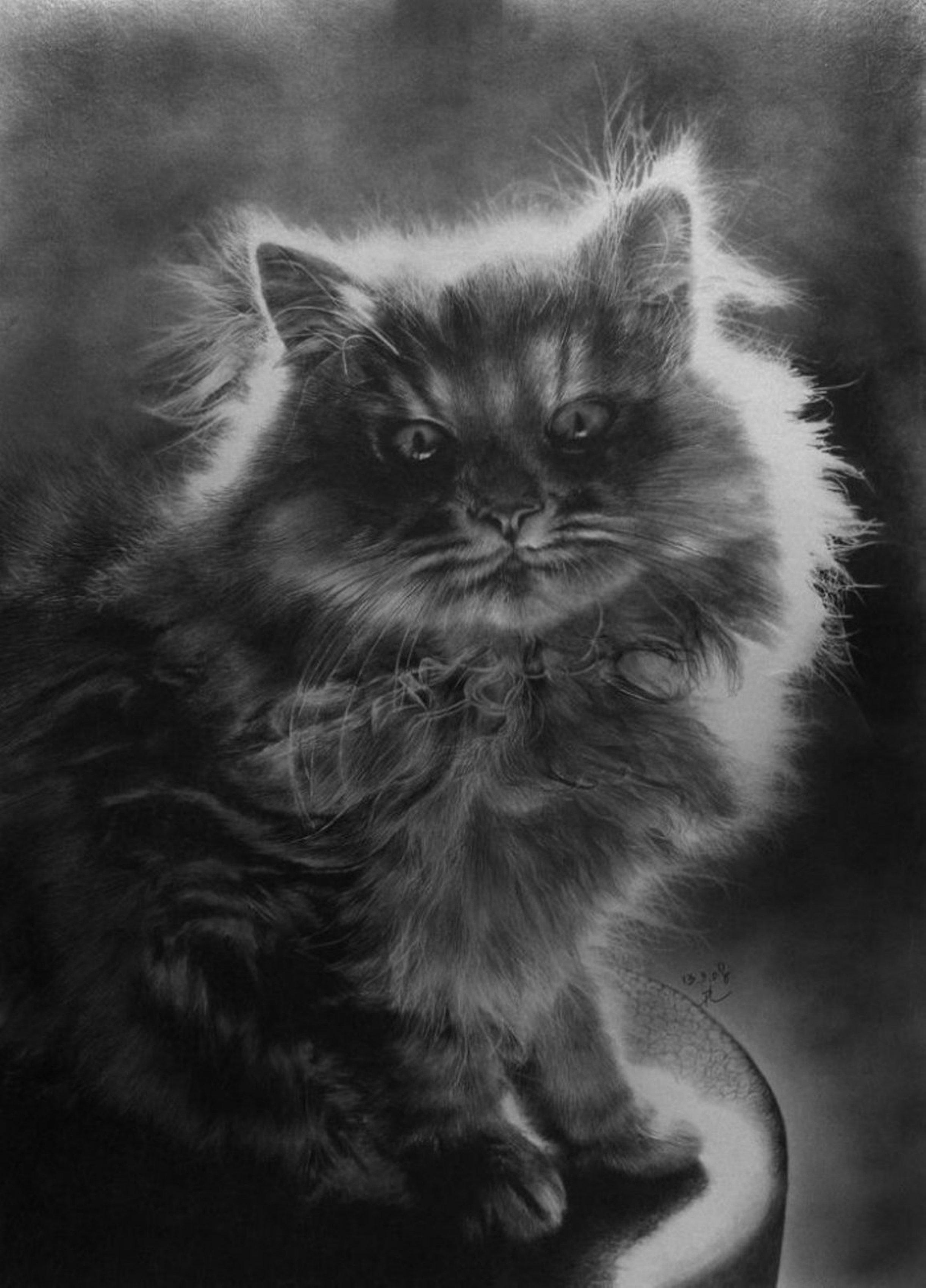 铅笔手绘小猫人