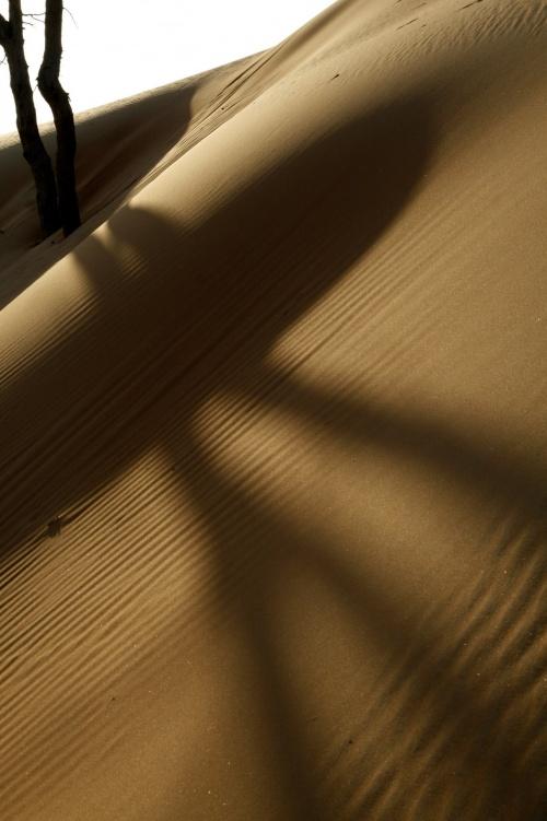 50 Amazing Shots Taken in the Most Dry Regions (50 фото)