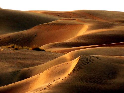 50 Amazing Shots Taken in the Most Dry Regions (50 фото)