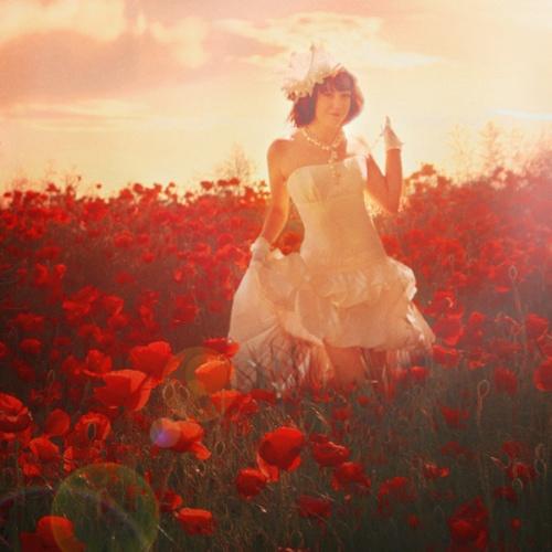 Свадебная фотография, как искусство. Фотограф Лана Гришина (259 фото)