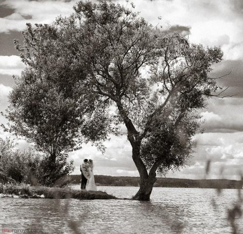 Свадебная фотография как искусство. Фотограф Татьяна Тихомирова (108 работ)