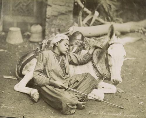 """Фото-альбом """"Egypt, Palestine and Jerusalem 1870-1900"""" (98 фото)"""