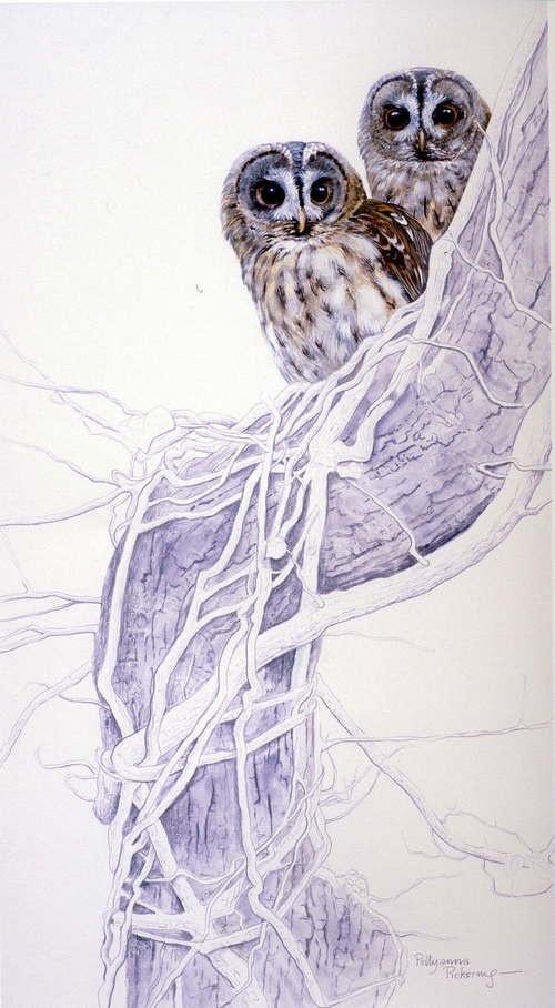 Работы художницы Pollyanna Pickering (54 работ)