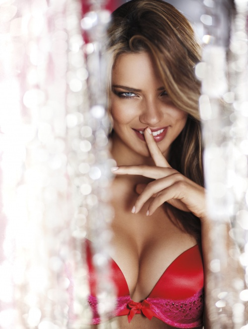 Adriana Lima, Candice Swanepoel, Erin Heatherton, Lily Aldridge - Victoria's Secret Holliday 2010 (32 фото)