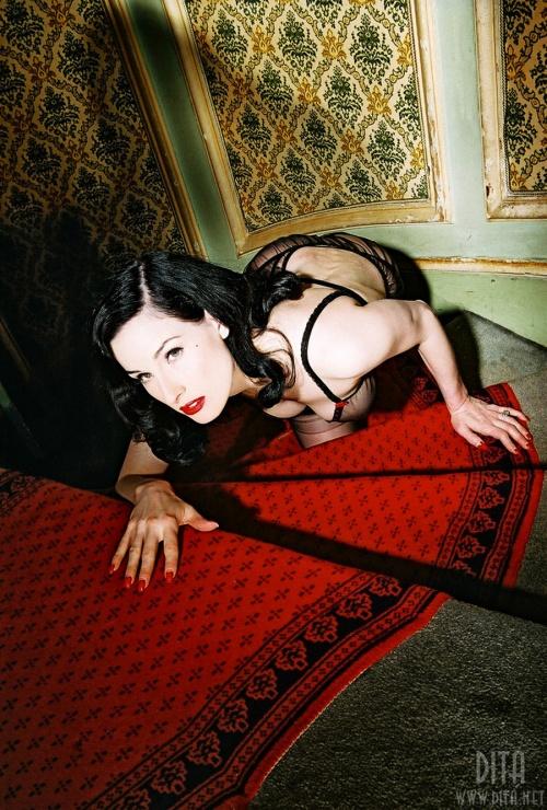Дита Вон Тис (Dita Von Teese) (300 фото)