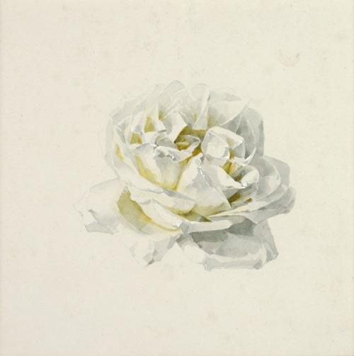 Натюрморты Paul De Longpre (60 работ)