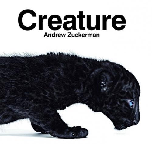 """Фотограф Andrew Zuckerman. Книга """"Существо"""" (36 фото)"""