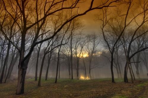 Фотограф Lowapproach. Краски природы... (52 фото)