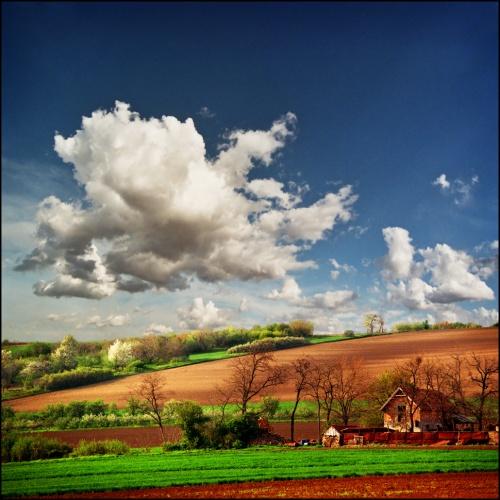 Фотограф Katarina Stefanovich. Новые работы (84 фото)