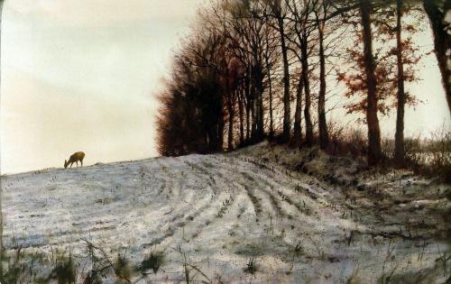 Художник Rien Poortvliet (359 работ)