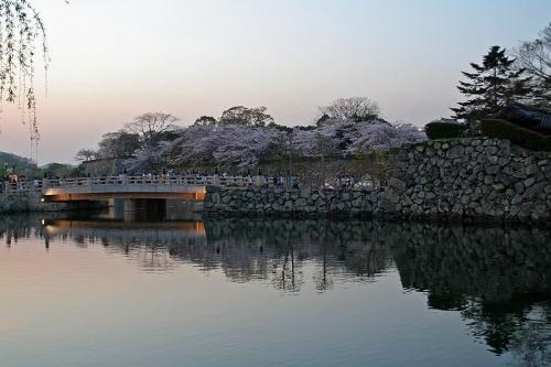 http://cp12.nevsepic.com.ua/79-2/thumbs/1355609379-800px-himeji_castle_april_42.jpg