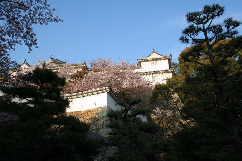 http://cp12.nevsepic.com.ua/79-2/thumbs/1355609380-800px-himeji_castle_april_32.jpg