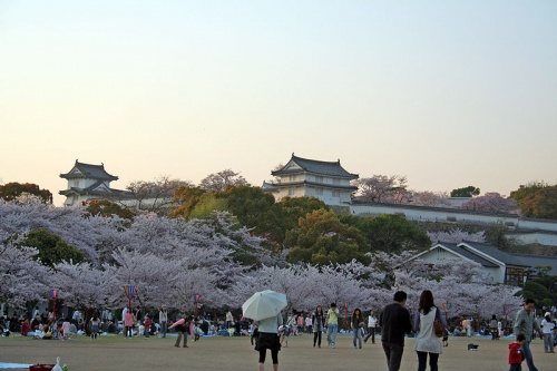 http://cp12.nevsepic.com.ua/79-2/thumbs/1355609387-800px-himeji_castle_april_38.jpg
