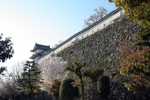 http://cp12.nevsepic.com.ua/79-2/thumbs/1355609388-800px-himeji_castle_april_17.jpg