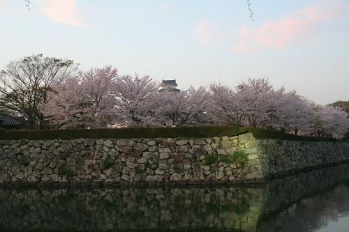 http://cp12.nevsepic.com.ua/79-2/thumbs/1355609395-800px-himeji_castle_april_43.jpg