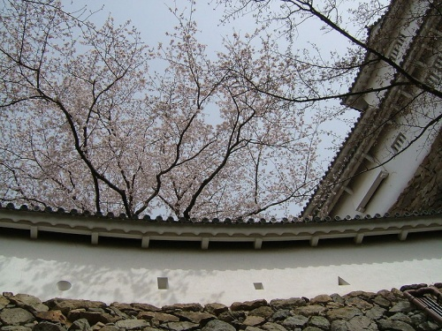http://cp12.nevsepic.com.ua/79-2/thumbs/1355609396-800px-himeji_castle_wall_sama.jpg