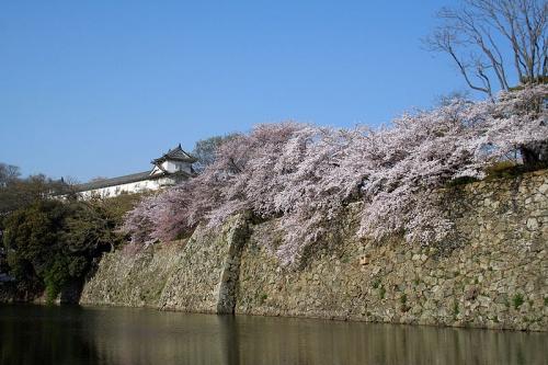 http://cp12.nevsepic.com.ua/79-2/thumbs/1355609397-800px-himeji_castle_april_03.jpg