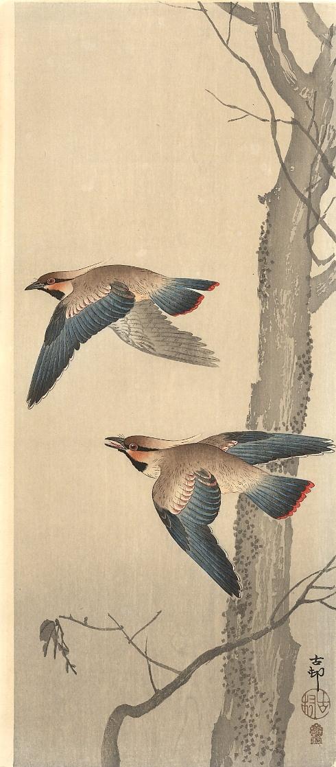 Японская живопись Художник Koson (Naga Oban) (13 работ)