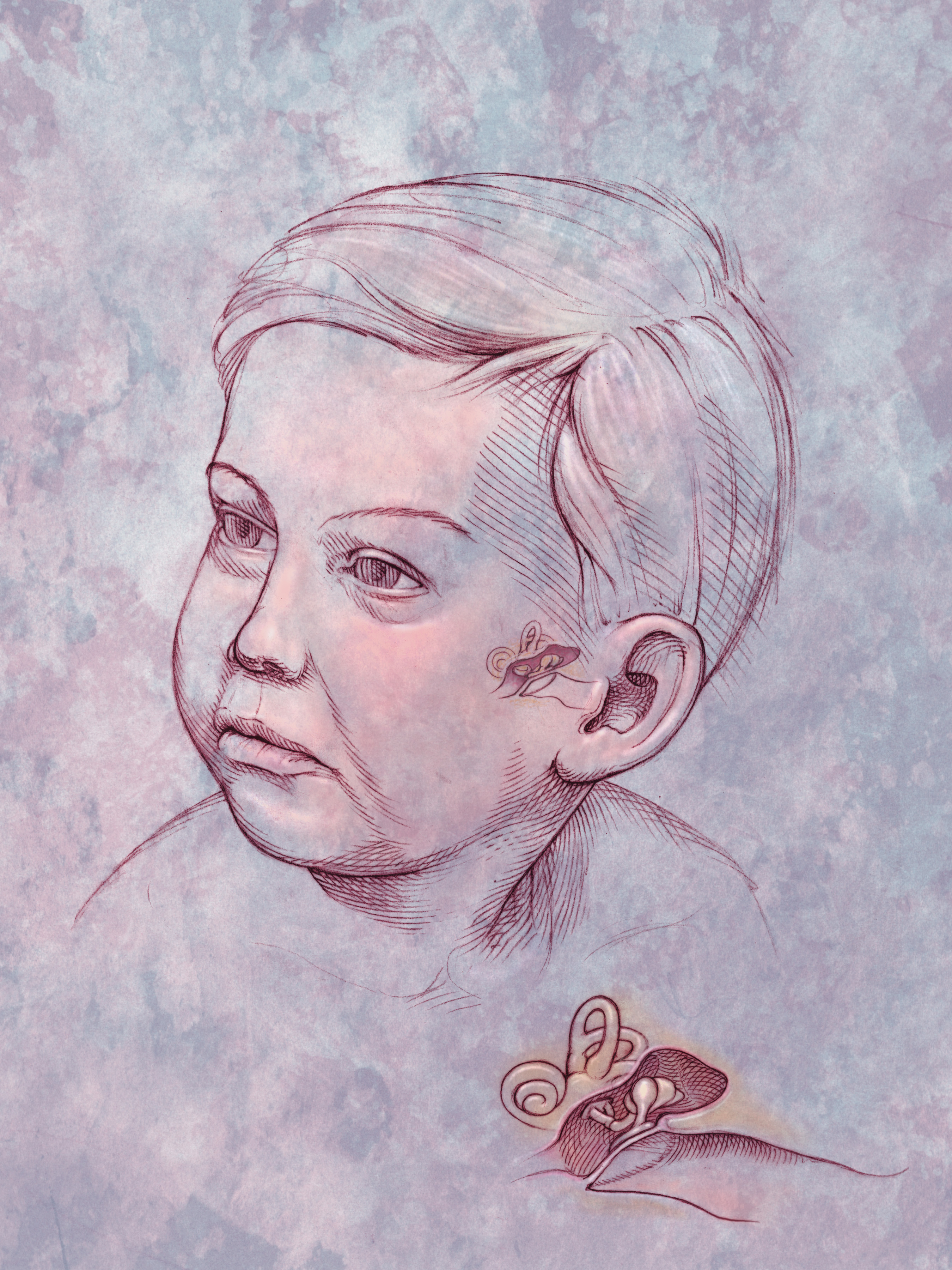 Анатомия стопы в рисунках