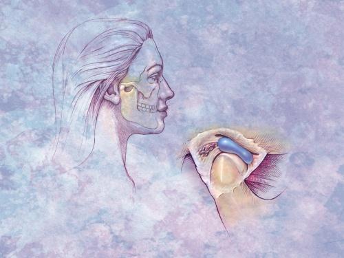 Анатомия человека в рисунках от ArtVille часть IL045. The Anatomy of Health (60 работ)