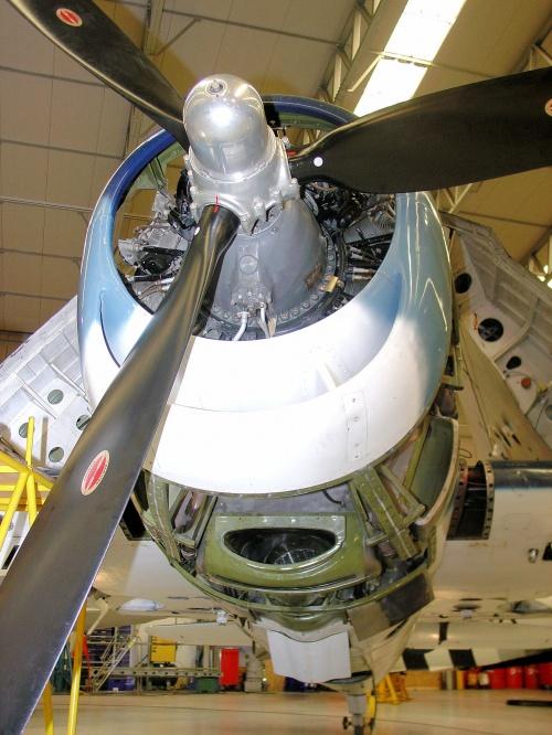 Американский палубный истребитель F6F-5K Hellcat (49 фото)