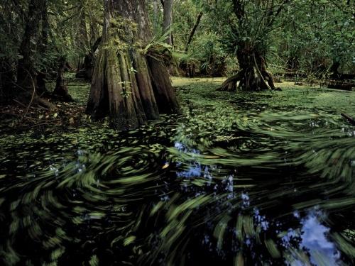 National Geographic часть 4 (154 фото)