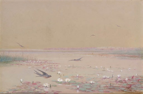 Fidelia Bridges (American, 1834-1924) (53 работ)