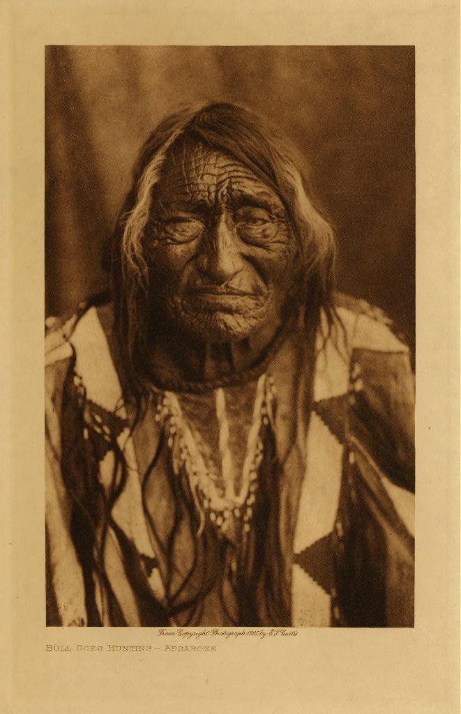 native american essay titles samples