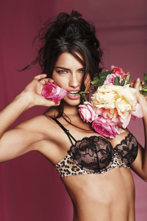 Victoria's Secret Valentine's Day 2011 (21 фото)